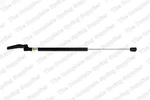 Gas Spring, boot, Right rear