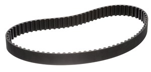Timing Belt, Rear