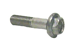 Screw with O-Ring, Evinrude, Johnson